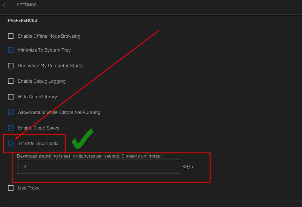 This picture shows where the Throttle Download option in the Epic Games Launcher is located!