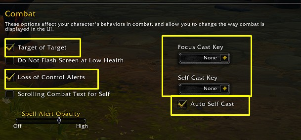 Best WoW Interface Combat settings