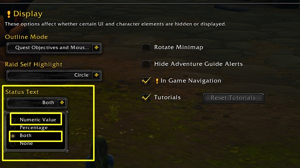 Best WoW Interface Display settings
